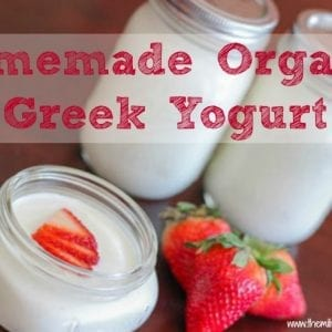homemade organic greek yogurt