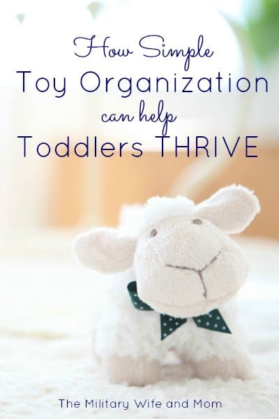 Toy Organization Helps Toddlers Thrive