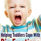 GREAT tips for helping toddlers cope with big emotions--tantrums included!