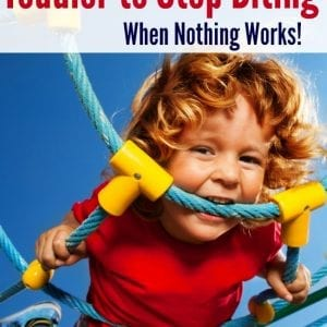 Dealing with a serious toddler biting problem? These are great tips!