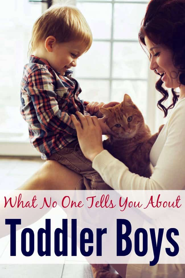 WanThe truth about parenting toddler boys. Love it.
