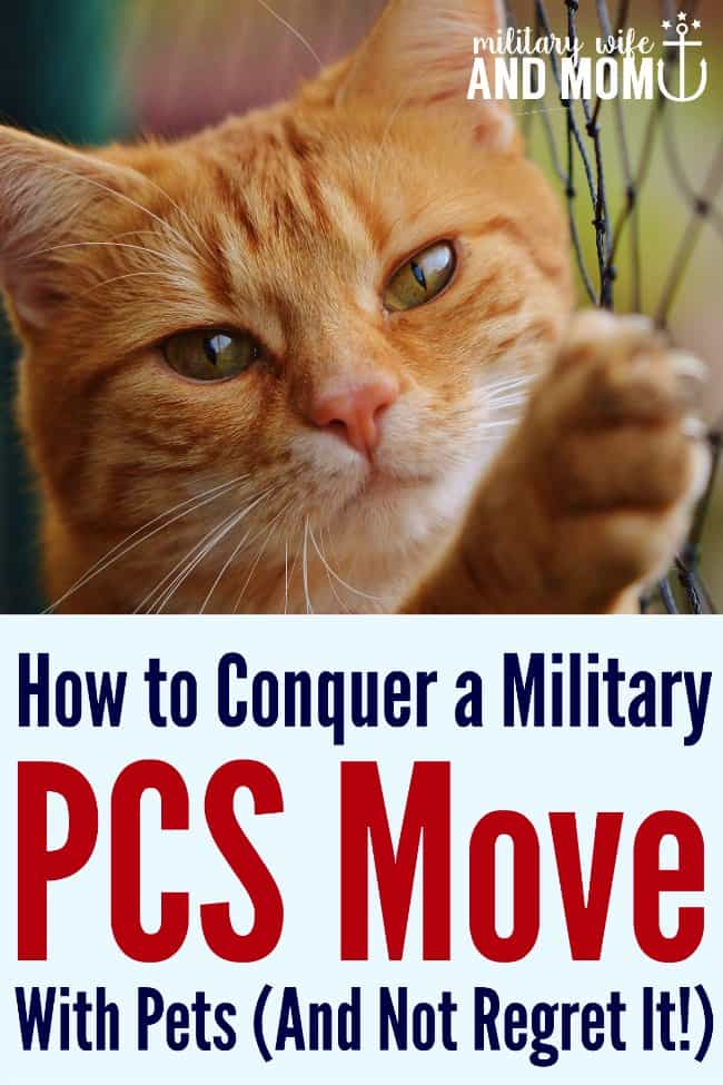 Getting ready to PCS with pets? Read these tips first!