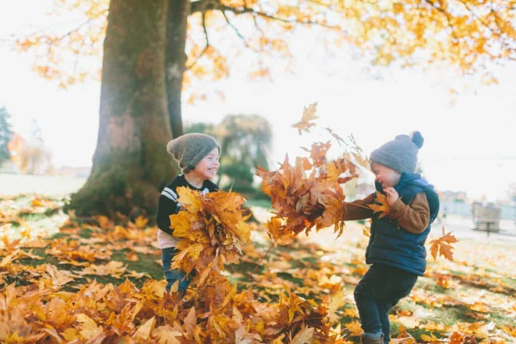 Two young boys play in a pile of fall leaves